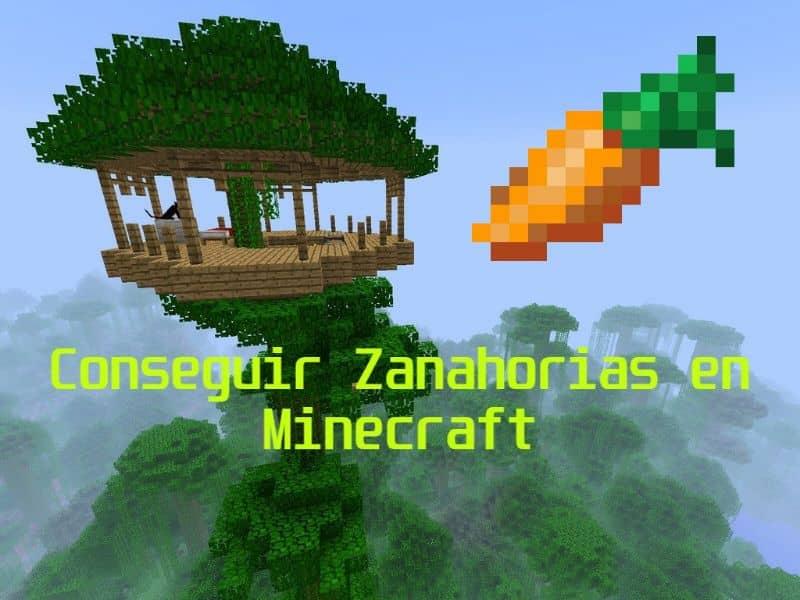 Como Conseguir Zanahorias O Semillas De Zanahoria De Minecraft Ejemplo Mira Como Se Hace Subespecie sativus, la zanahoria, pertenece a la familia de las umbelíferas, también denominadas apiáceas. semillas de zanahoria de minecraft